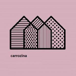 Carrozzina